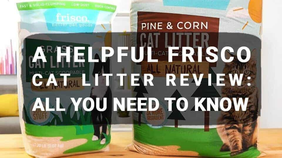 A Helpful Frisco Cat Litter Review: All You Need to Know