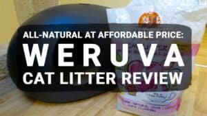 All-Natural at Affordable Price: Weruva Cat Litter Review