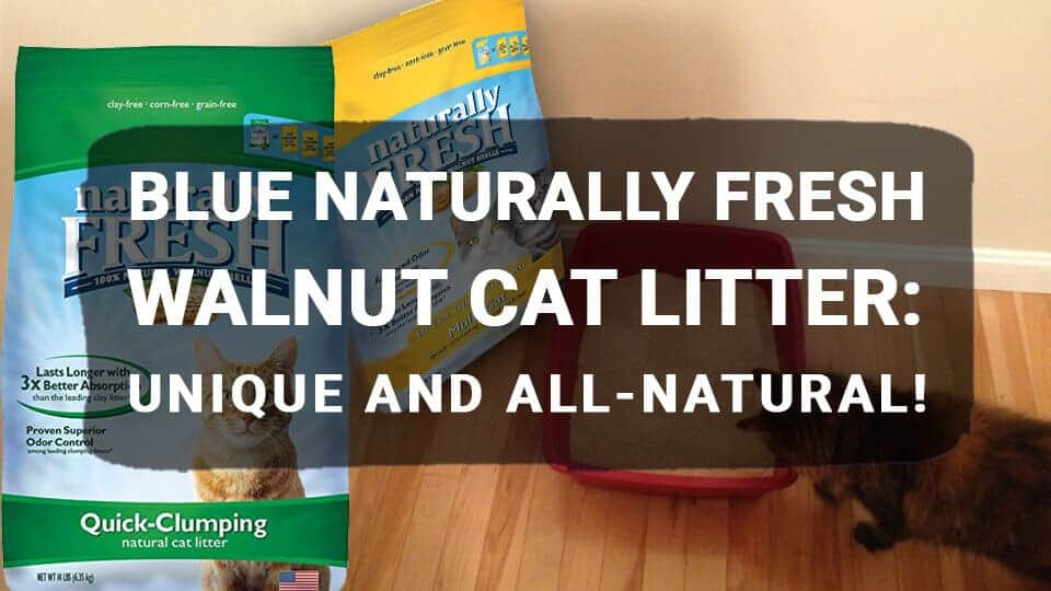 BLUE-Naturally-Fresh-Walnut-Cat-Litter