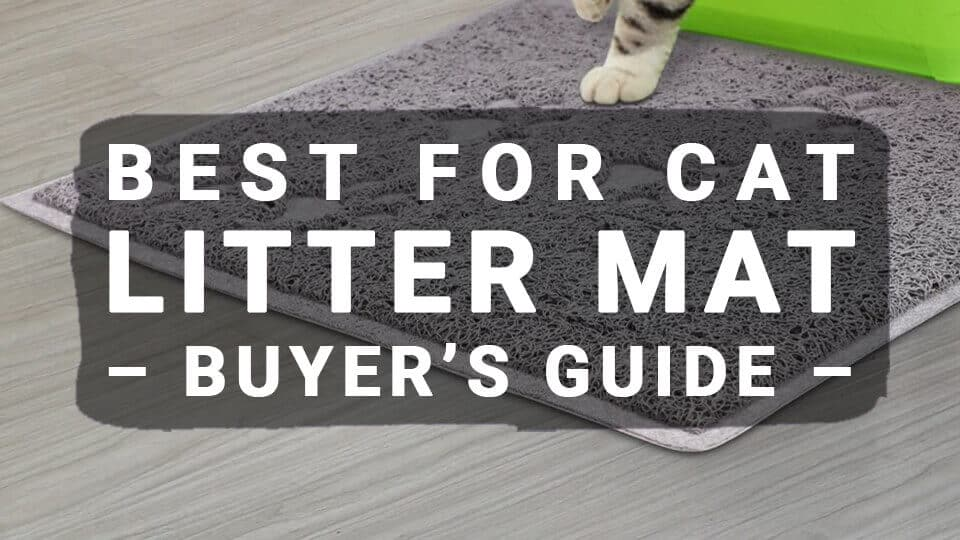 Best-For-Cat-Litter-Mat-Buyers-Guide