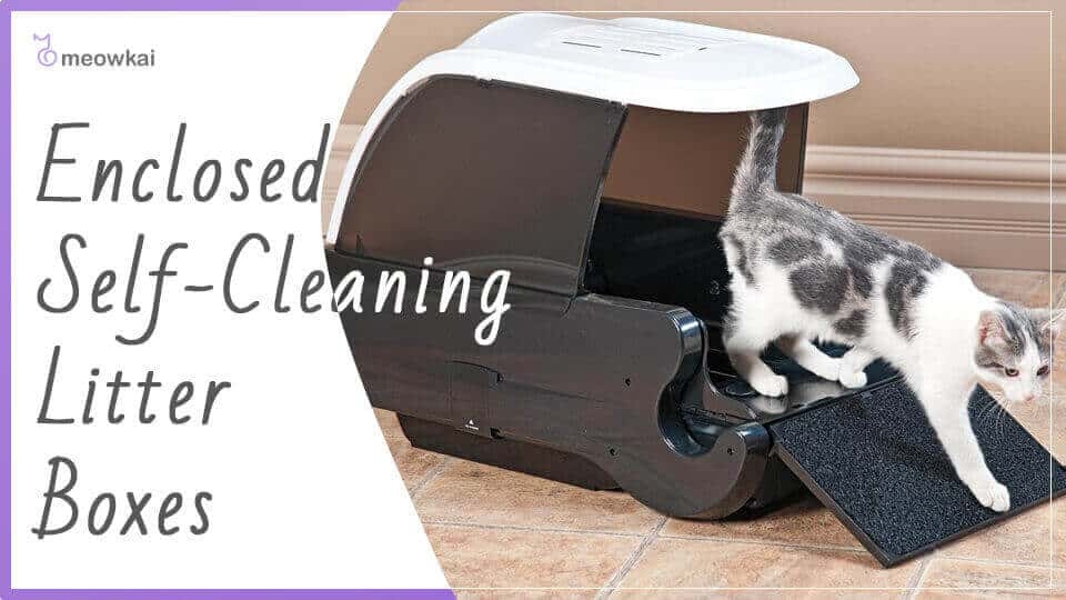 Enclosed-Self-Cleaning-Litter-Boxes