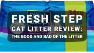 Fresh Step Cat Litter Review: The Good and Bad Of The Litter
