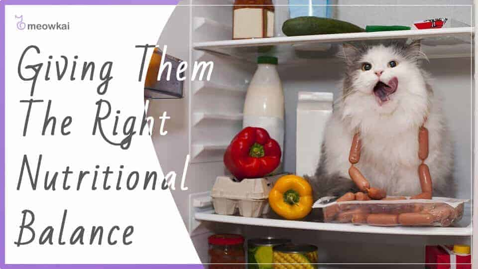 Giving-them-the-right-nutritional-balance