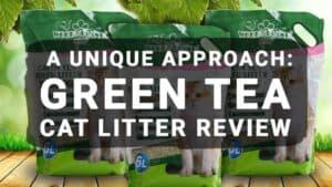A Unique Approach: Green Tea Cat Litter Review