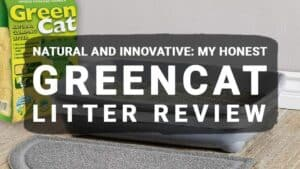 Natural and Innovative: My Honest GreenCat Litter Review