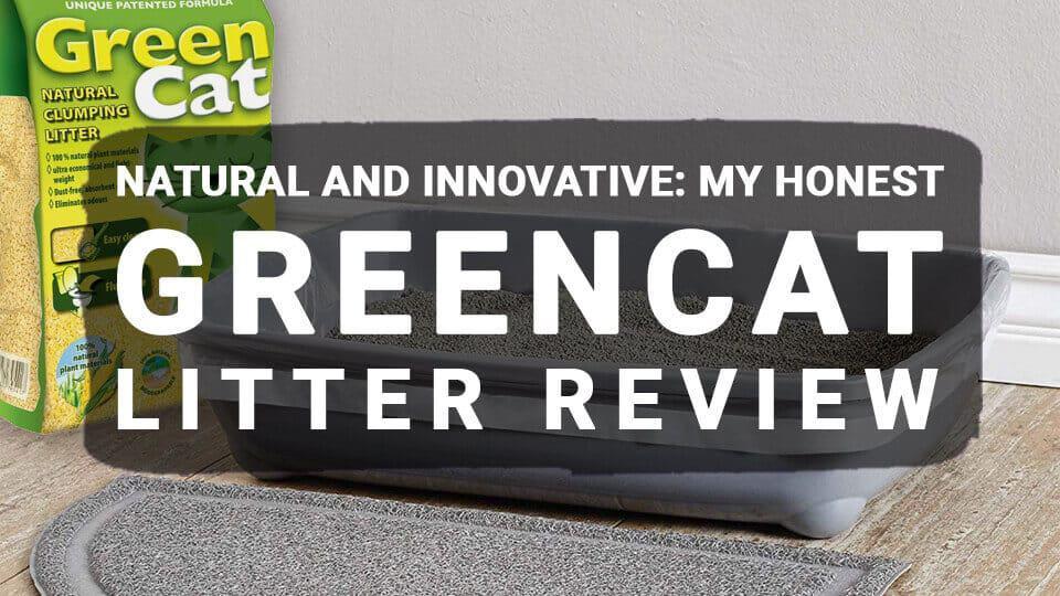 GreenCat-Litter