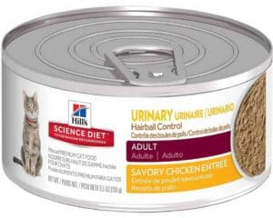 Best Cat Food For Urinary Health 2019 Buyer S Guide