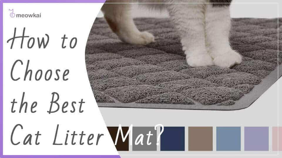 How-to-Choose-the-Best-Cat-Litter-mat