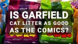 Is Garfield Cat Litter As Good As The Comics?