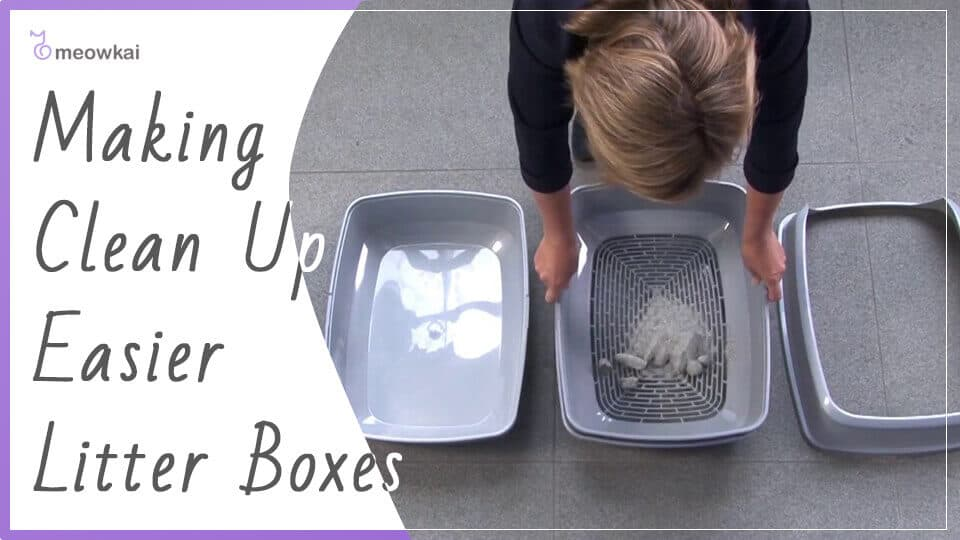 Making-Clean-Up-Easier-Litter-Boxes