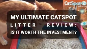 My Ultimate CatSpot Litter Review: Is It Worth the Investment?