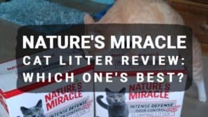Nature's Miracle Cat Litter Review: Which One's Best?
