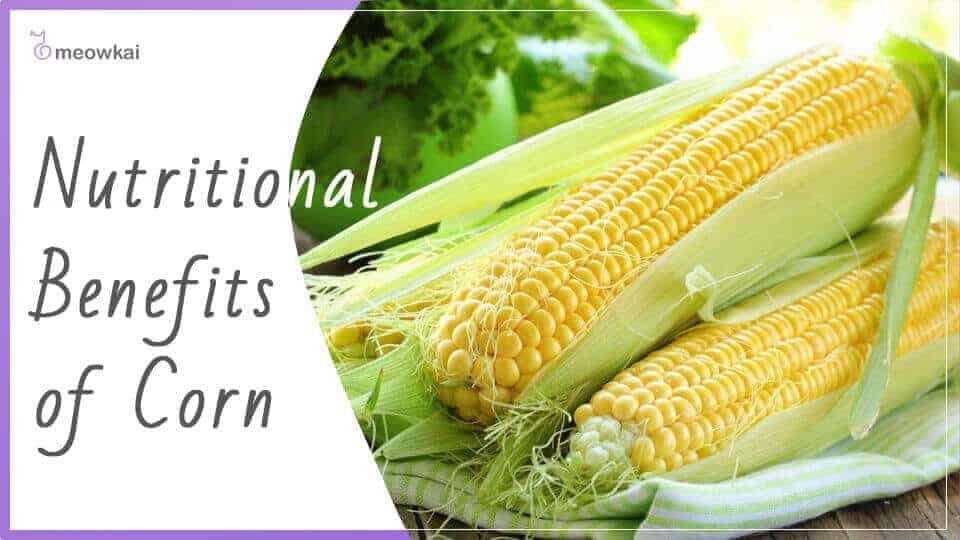 Nutritional-Benefits-of-Corn
