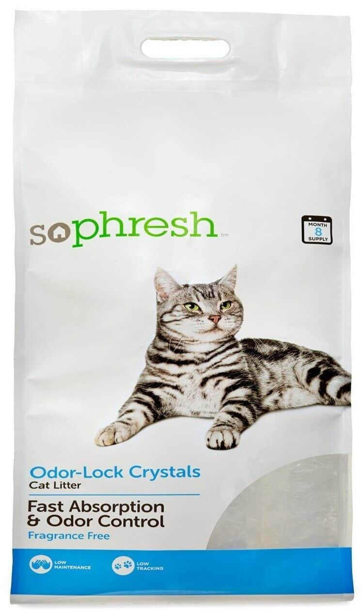 So Phresh Litter: The Most Affordable But Is It Worth Buying? - Meowkai