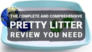 The Complete and Comprehensive Pretty Litter Review You Need