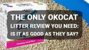 The Only Okocat Litter Review You Need: Is It As Good As They Say?