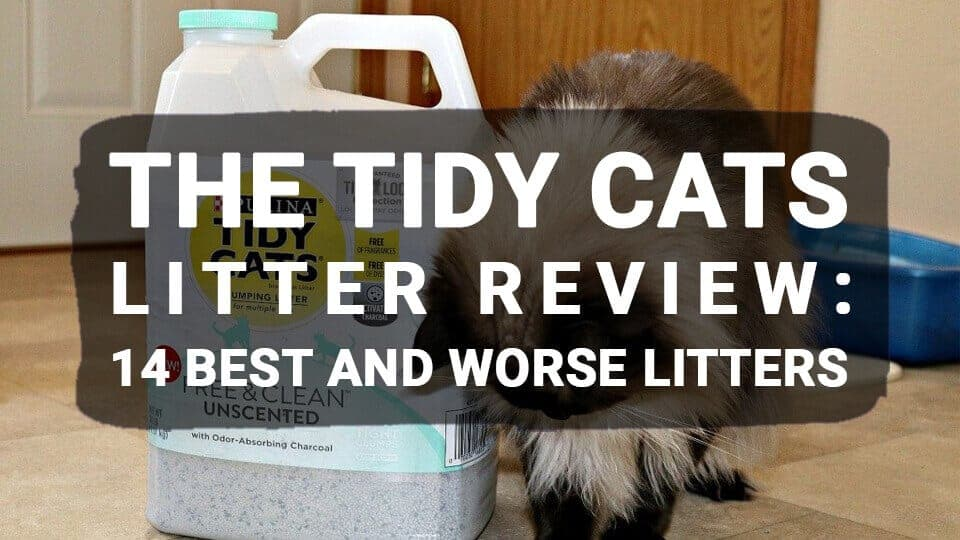 The-Tidy-Cats-litter