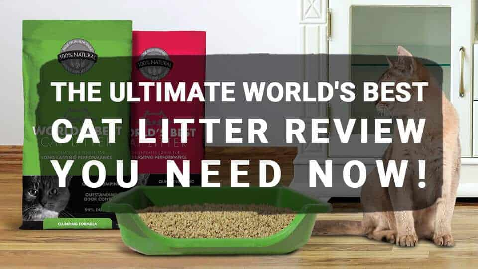The-Ultimate-World's-Best-Cat-Litter
