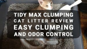 Tidy Max Clumping Cat Litter Review – Easy Clumping and Odor Control