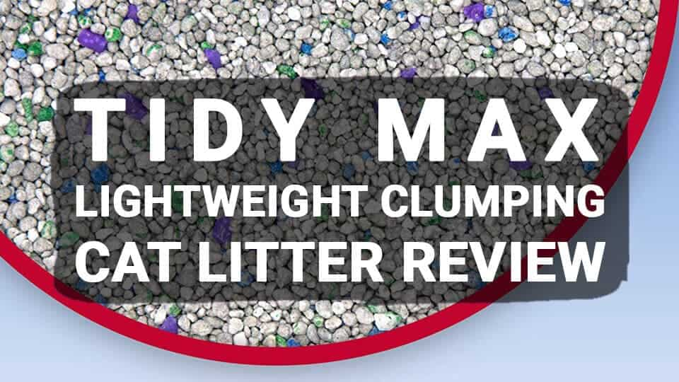 Tidy Max LightWeight Clumping Cat Litter Review – Lightweight but Extremely Effective