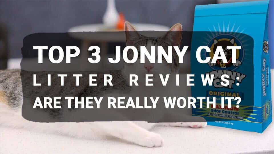 Top 3 Jonny Cat Litter Reviews: Are They Really Worth It?