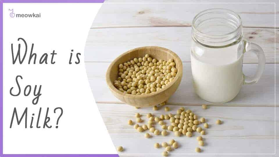 What-is-Soy-Milk