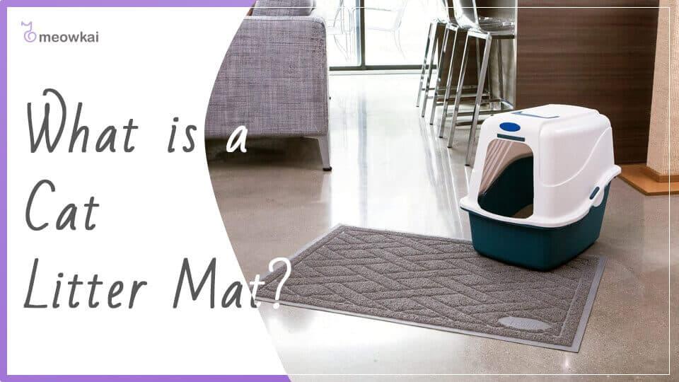 What-is-a-Cat-litter-mat