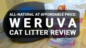 Read more about the article All-Natural at Affordable Price: Weruva Cat Litter Review