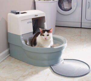 Read more about the article Best Automatic Litter Box in 2020 – Buyers Guide