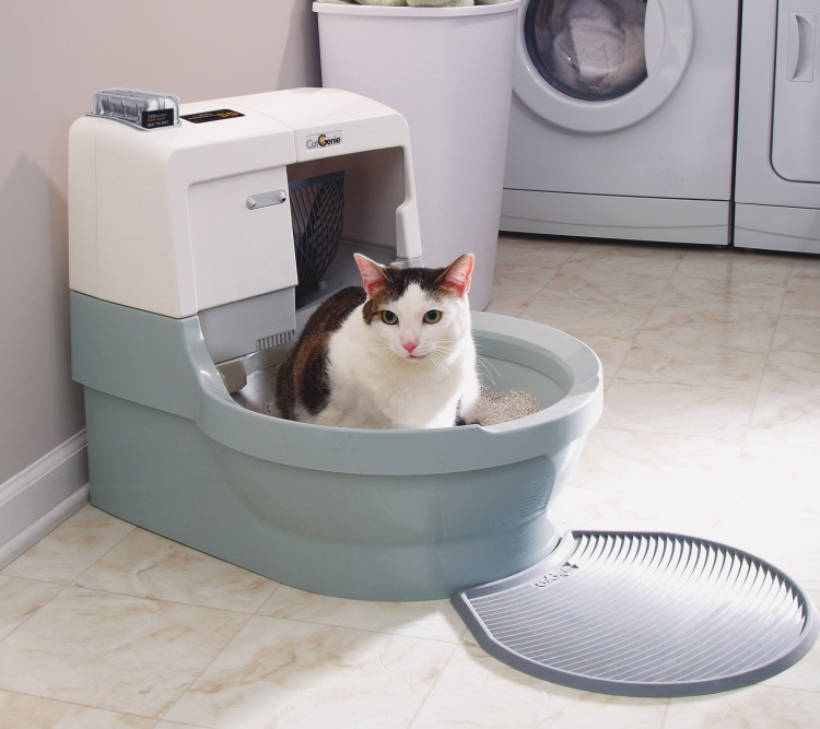 You are currently viewing Best Automatic Litter Box in 2020 – Buyers Guide