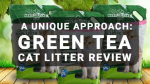 Read more about the article A Unique Approach: Green Tea Cat Litter Review