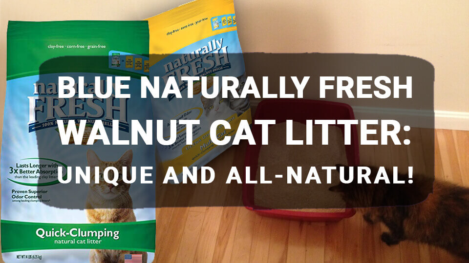 You are currently viewing BLUE Naturally Fresh Walnut Cat Litter: Unique and All-Natural!