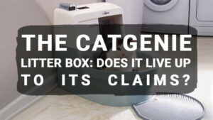 Read more about the article The CatGenie Litter Box: Does It Live Up To Its Claims?