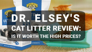 Read more about the article Dr. Elsey's Cat Litter Review: Is It Worth the High Prices?