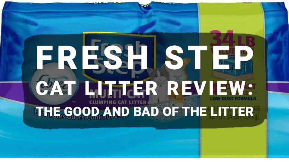 You are currently viewing Fresh Step Cat Litter Review