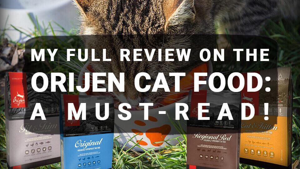 My Full Review on the Orijen Cat Food: A Must-Read!