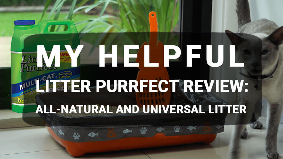 You are currently viewing My Helpful Litter Purrfect Review: All-Natural and Universal Litter