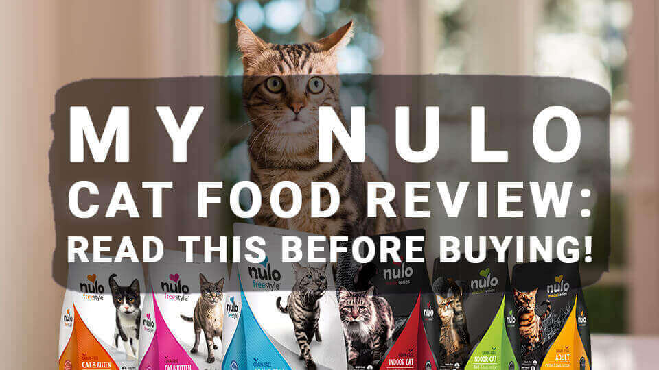 You are currently viewing My Nulo Cat Food Review: Read This Before Buying!