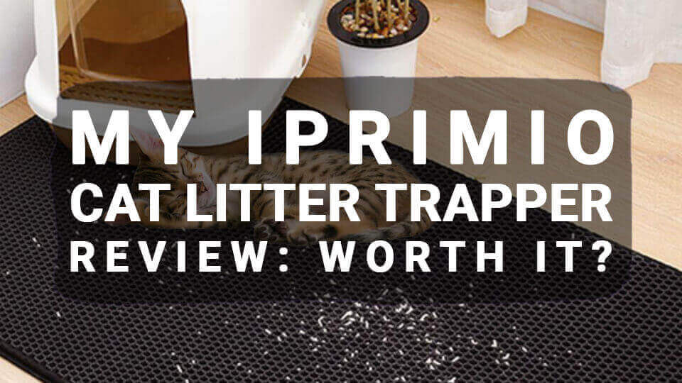 You are currently viewing My iPrimio Cat Litter Trapper Review: Worth It?