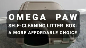 Read more about the article Omega Paw Self-Cleaning Litter Box: A More Affordable Choice