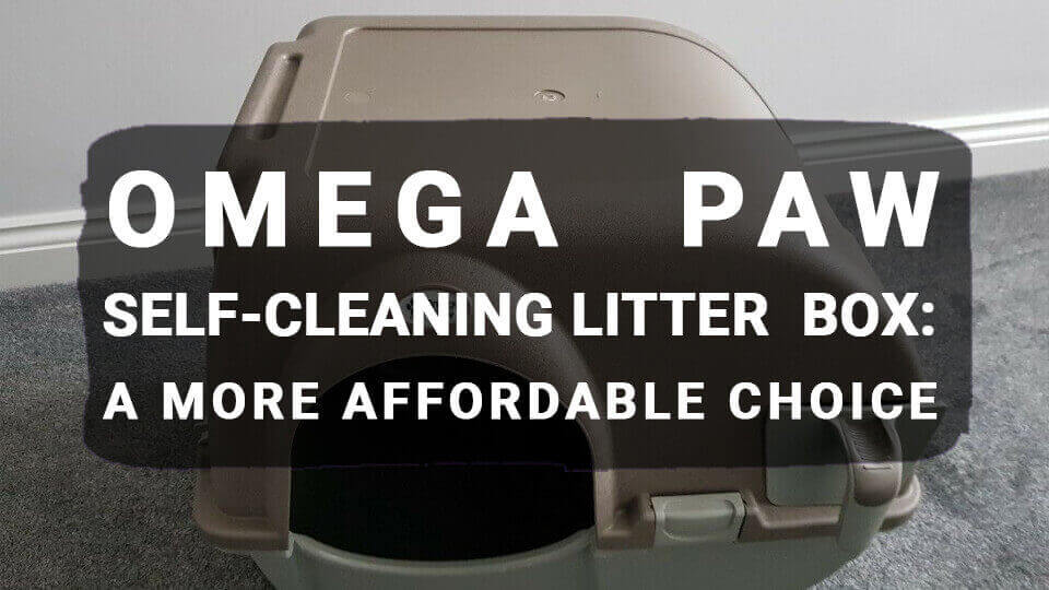 You are currently viewing Omega Paw Self-Cleaning Litter Box: A More Affordable Choice