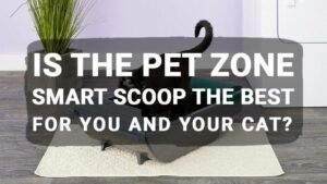 Is the Pet Zone Smart Scoop the Best For You and Your Cat?