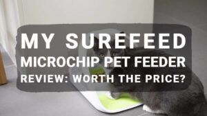 My Surefeed Microchip Pet Feeder Review: Worth the Price?